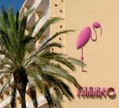 4 Sterne  Hotel ABI-CLUB Flamingo in Lloret de Mar - Ansicht 6